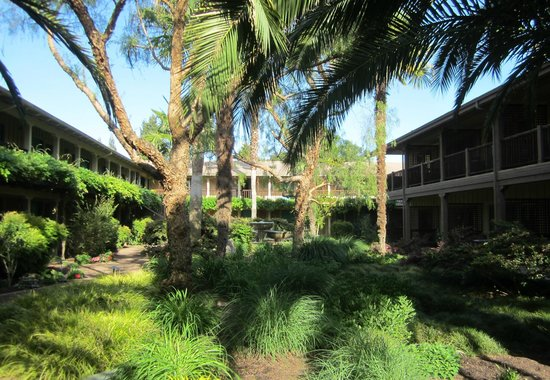 El Pueblo Inn: The courtyard garden