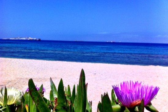 Mykonos Bay Hotel : beautifull beach