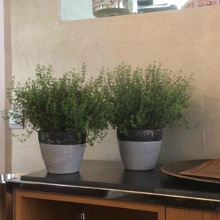 Hôtel restaurant Les Avisés : che eleganza