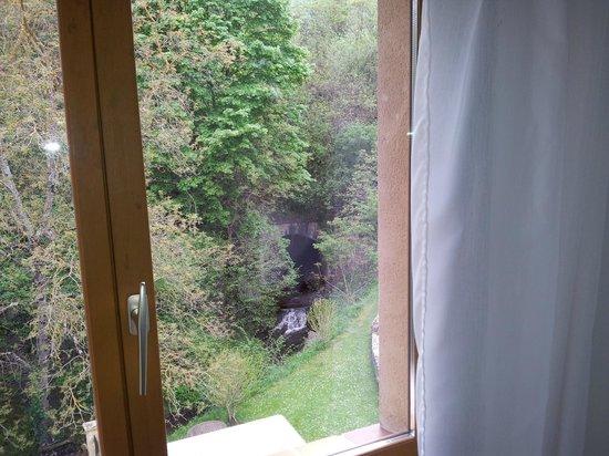 Aux Quatre Saisons : Vista del pequeño riachuelo desde el apartamento superior