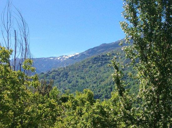 Bed & Breakfast Arroyo de la Greda: The snow capped peaks of Pico de Veleta