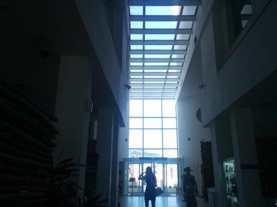 db Seabank Resort + Spa: reception