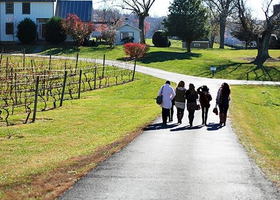 Greenhill Winery and Vineyards: Photo by Lisa McAvoy