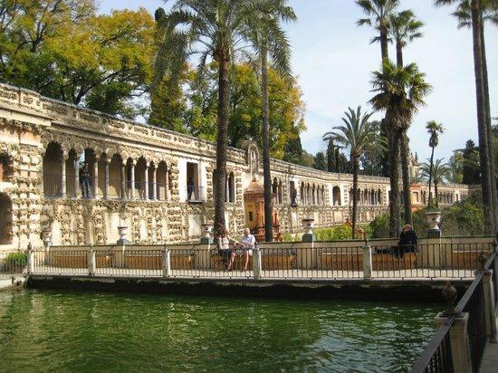 Real Alcazar: сады