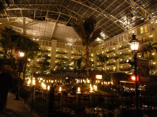 Gaylord Opryland Resort & Convention Center : vista interna Cascade