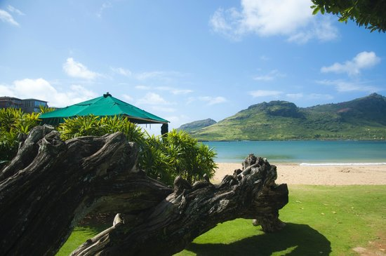 Kaua'i Marriott Resort: Kalapaki Beach at the Marriot Resort