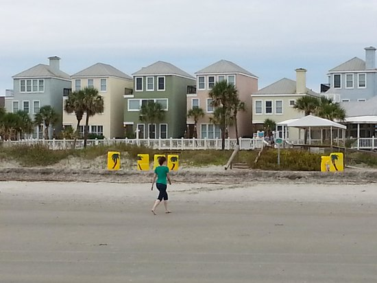 Wild Dunes Resort : View from beach