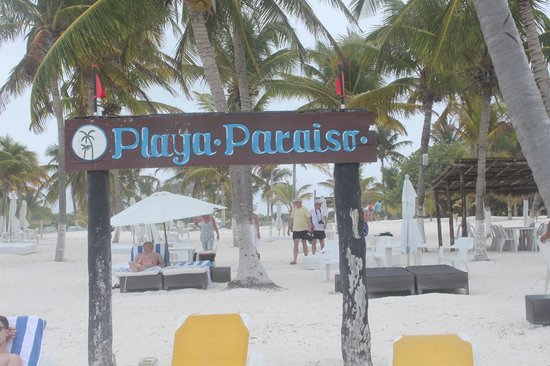 Playa Paraiso: playa
