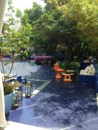 Shore Club South Beach Hotel: Area da piscina e restaurantes
