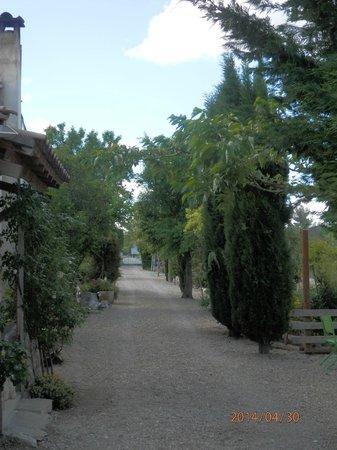 Chambres d'hote Chez Cecile : giardino