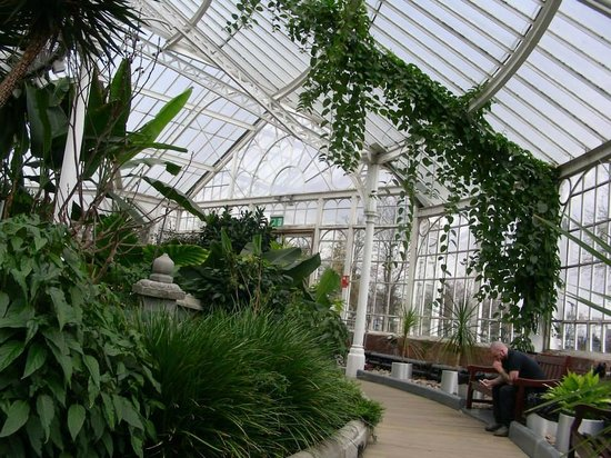 People's Palace and Winter Gardens : winter gardens