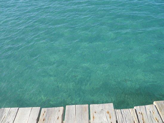 Playa de Alcudia: Aguas transparentes.