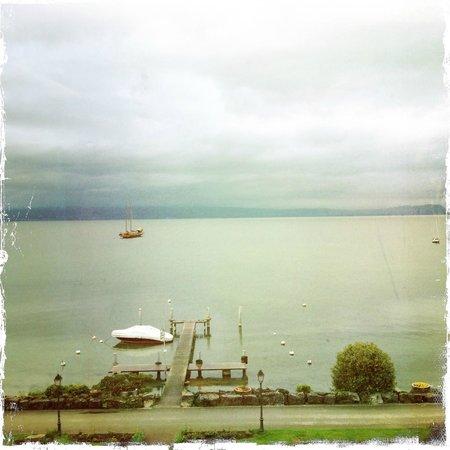 La Fleur du Lac : Right at the shore of Lake Geneva