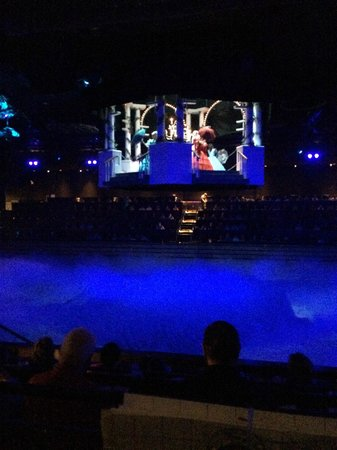 Dolly Parton's Dixie Stampede Dinner & Show: dancing ladies