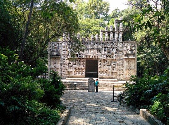 Museo Nacional de Antropología: .