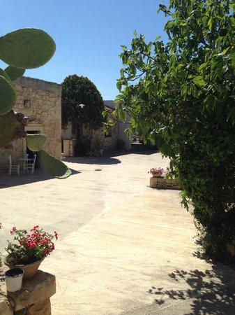 Agriturismo Borgo Alveria: Garden