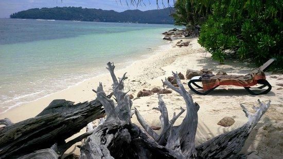 New Emerald Cove: PLAGE