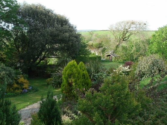 Boscastle House: beautiful garden