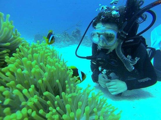 """Diving Center Dive Club Italiano : Matilde e """"Nemo"""""""