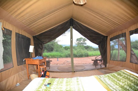 Mkomazi Game Reserve, แทนซาเนีย: View from the bed.