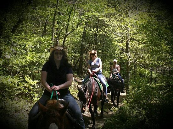 Davy Crockett Riding Stables: Stunning scenery!