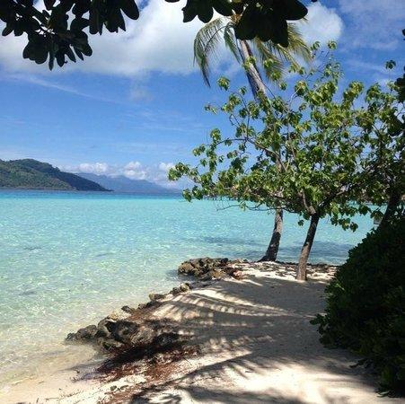 Le Taha'a Island Resort & Spa: by reception