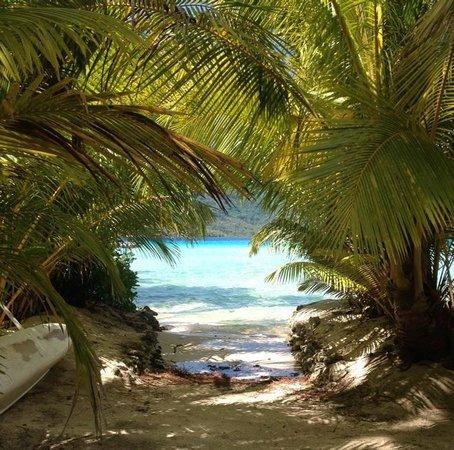 Le Taha'a Island Resort & Spa: Le tahha resort