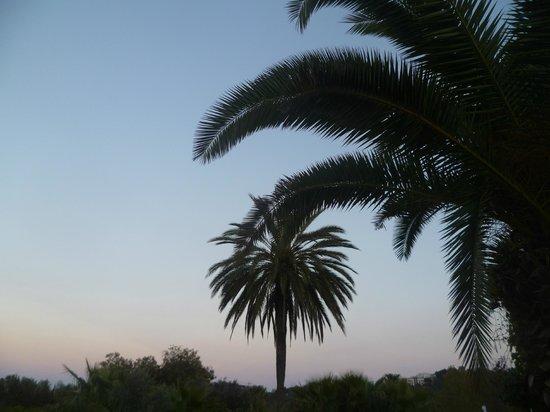 Bungalows Papalus: Vista desde la terraza