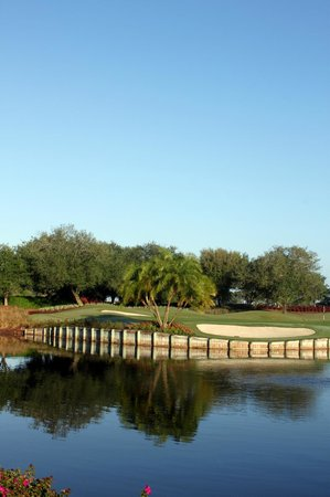 LaPlaya Golf Course: No. 18 green