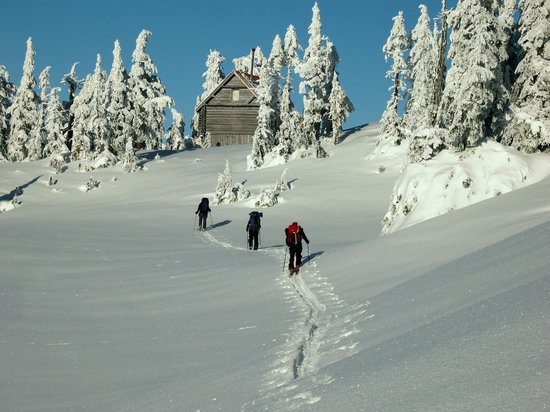 Sechelt, Canadá: Approaching Mt. Steele Cabin
