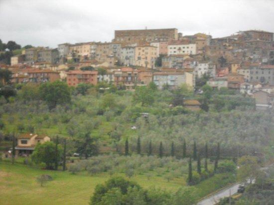 Agriturismo La Pietriccia: Panorama
