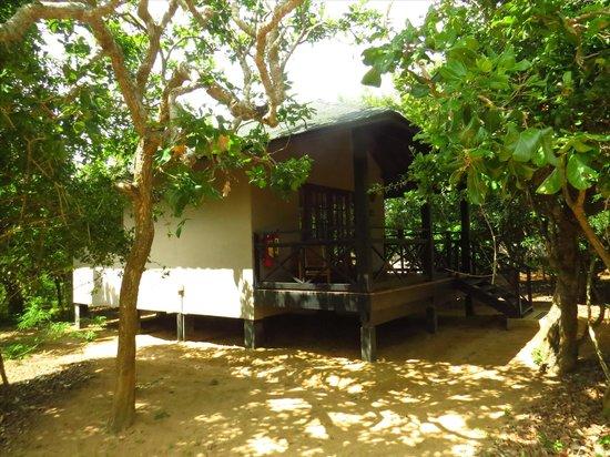 Cinnamon Wild Yala: lodges