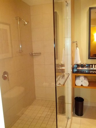 Renaissance Chicago O'Hare Suites Hotel: Awesome Shower