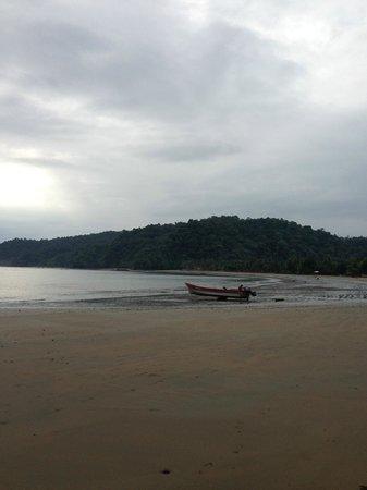 Playa de Oro Lodge : Mar