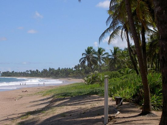 Praia Busca Vida