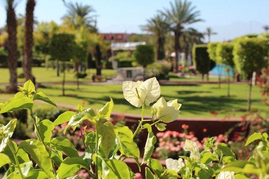 SENTIDO Kenzi Menara Palace : jardins