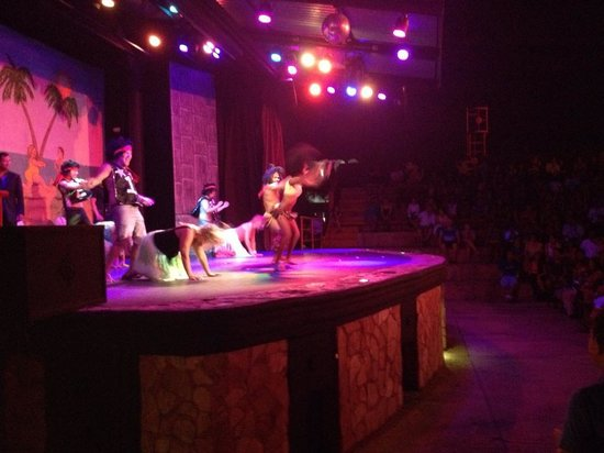 Royal Decameron Complex: The night time entertainment is so fun!