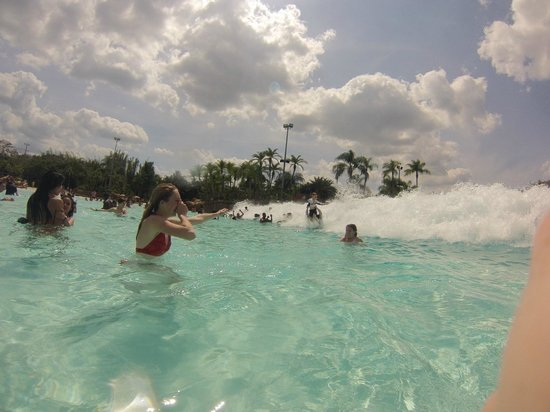 Disney's Typhoon Lagoon Water Park: Here come the waves