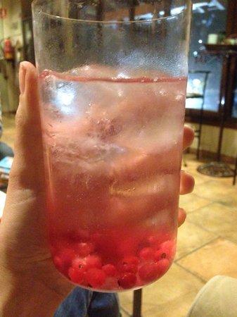Hotel La Casa del Rio: Gin Tonic (guau!)