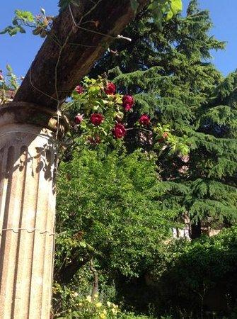 Residence La Corte: внутренний садик