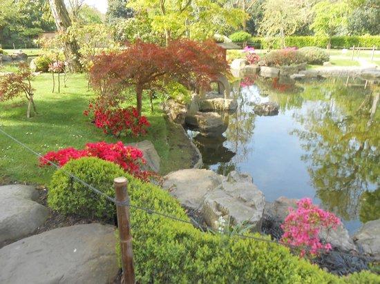 Holland Park : Kyoto Japanes Garden Lake