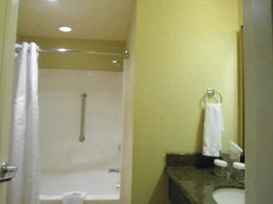 DoubleTree by Hilton Hotel Campbell - Pruneyard Plaza: Nice shampoo and body lotion and huge bathroom area.