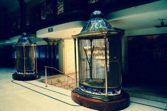 Gran Hotel Ciudad de Mexico : Gaiola com pássaros lindos