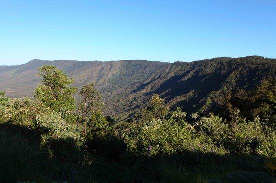 Eungella Mountain Edge Escape: View from the verandah of cabin C