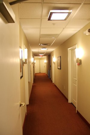 TownePlace Suites Arundel Mills BWI Airport : Hallway