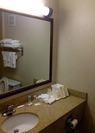 Howard Johnson Atlanta Airport: Bathroom
