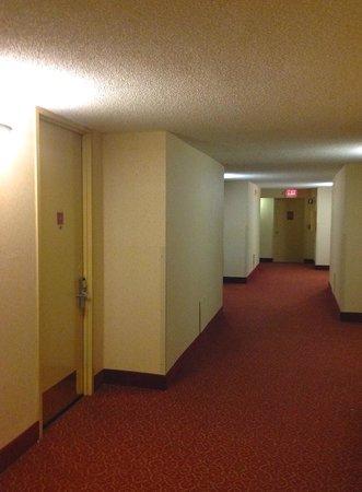 Howard Johnson Atlanta Airport: Corridor