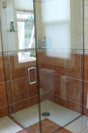 Woodgrove Homestead: shower