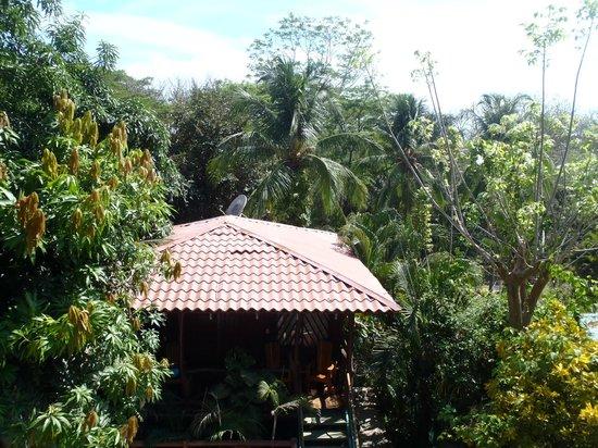 Hotel Raratonga: View toward beach