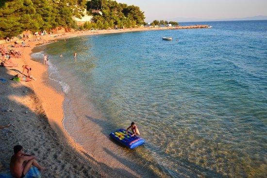 SENTIDO Bluesun Berulia : la plage à côté de l hôtel
